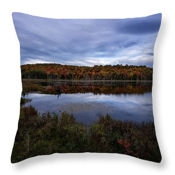 Autumn On North Pond Road Throw Pillow by Tom Singleton