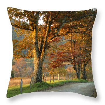 Autumn On Sparks Lane Throw Pillow