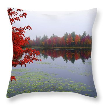 Autumn On The Bellamy Throw Pillow