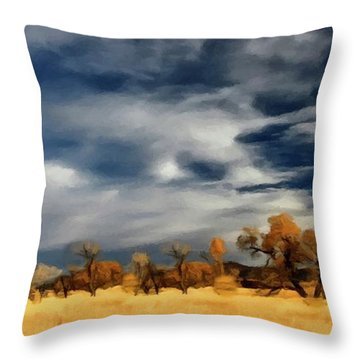 Autumn On The Edge Of The Great Plains  Throw Pillow by David Dehner