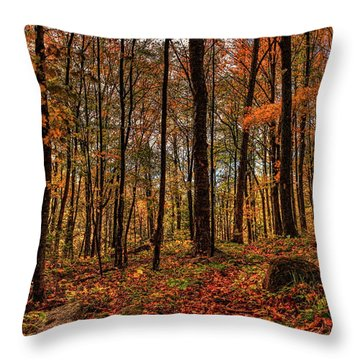 Autumn On The Ice Age Trail Throw Pillow