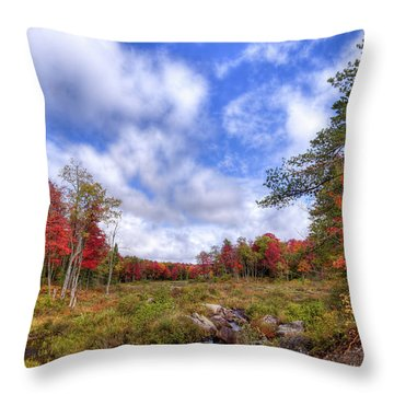Throw Pillow featuring the photograph Autumn On The Stream by David Patterson