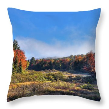 Throw Pillow featuring the photograph Autumn Panorama At The Green Bridge by David Patterson