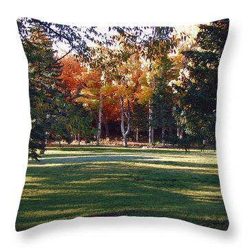 Autumn Park Throw Pillow