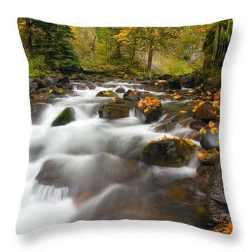 Autumn Passages Throw Pillow by Mike  Dawson