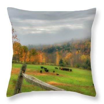 Throw Pillow featuring the photograph Autumn Pasture -  by Joann Vitali
