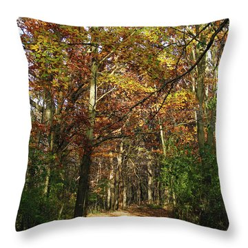 Autumn Path At St Croix Bluffs Throw Pillow