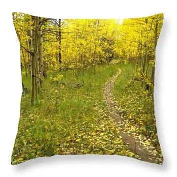 Autumn Path Throw Pillow