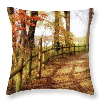 Autumn Pathway Throw Pillow