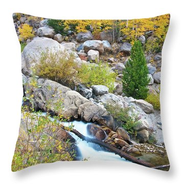 Throw Pillow featuring the photograph Autumn Peace by Gary Lengyel