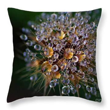 Throw Pillow featuring the photograph Autumn Pearls by AmaS Art
