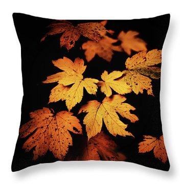 Autumn Photo Throw Pillow