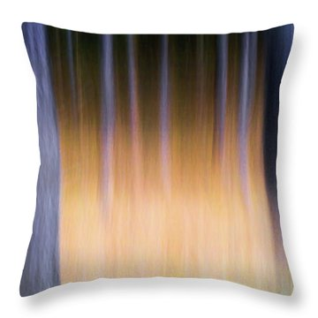 Throw Pillow featuring the photograph Autumn Pine Forest Abstract by Dirk Ercken