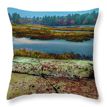 Autumn Rain 2 Throw Pillow