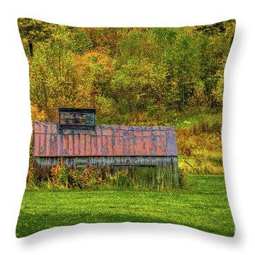 Autumn Rain 3 Throw Pillow