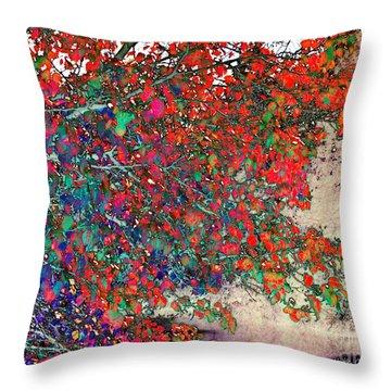 Autumn Rainbow Throw Pillow