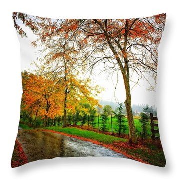 Autumn Rains Throw Pillow