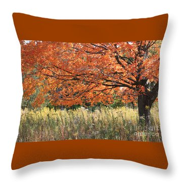Throw Pillow featuring the photograph Autumn Red   by Paula Guttilla