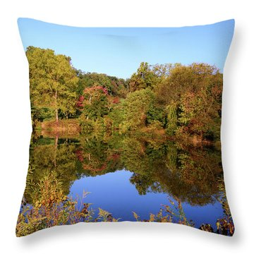 Throw Pillow featuring the photograph Autumn Reflection by Angie Tirado