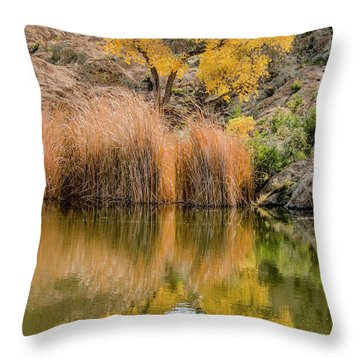 Autumn Reflection At Boyce Thompson Arboretum Throw Pillow