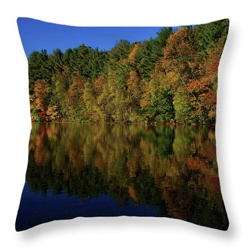 Autumn Reflection Of Colors Throw Pillow by Karol Livote