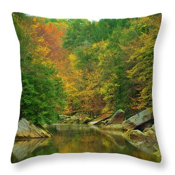 Autumn Reflections At Mcconnels Mill Throw Pillow
