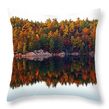 Autumn Reflections Throw Pillow by Debbie Oppermann