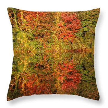 Autumn Reflections In A Pond Throw Pillow