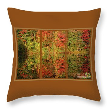 Autumn Reflections In A Window Throw Pillow