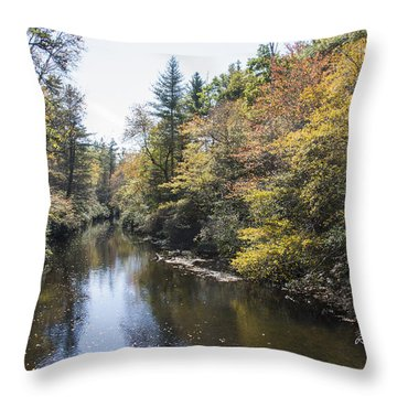 Autumn River Throw Pillow