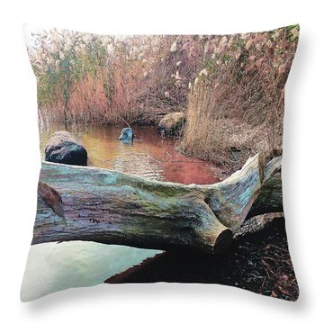 Throw Pillow featuring the photograph Autumn Riverside by Roger Bester