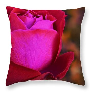 Throw Pillow featuring the photograph Autumn Rose by Isabella F Abbie Shores FRSA