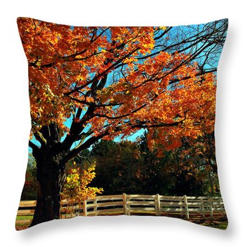 Throw Pillow featuring the photograph Autumn Rows by Joan  Minchak