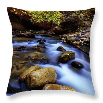 Autumn Run Throw Pillow