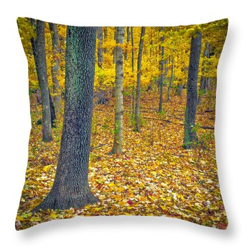 Throw Pillow featuring the photograph Autumn by Samuel M Purvis III