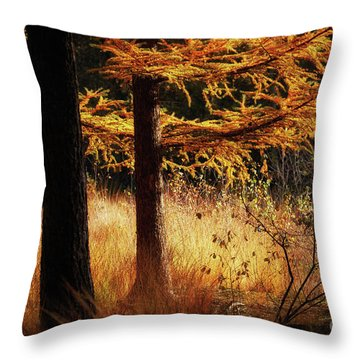 Throw Pillow featuring the photograph Autumn Scene In A Dark Forest by Nick Biemans