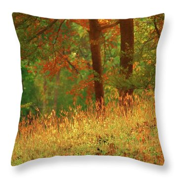 Autumn Scene In The Forest Throw Pillow by Yali Shi