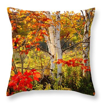 Autumn Scene With Red Leaves And White Birch Trees, Nova Scotia Throw Pillow