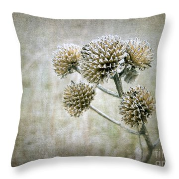 Autumn Seed Heads IIi Throw Pillow