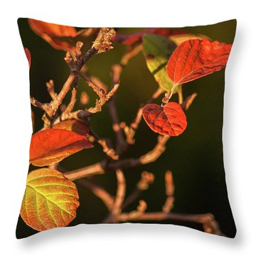 Autumn Shining Throw Pillow