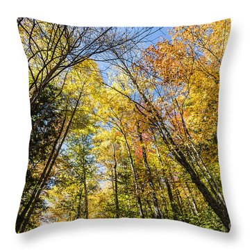 Throw Pillow featuring the photograph Autumn Skies by Anthony Baatz