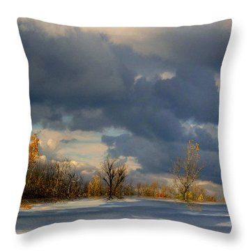 Throw Pillow featuring the photograph Autumn Skies  by Elfriede Fulda