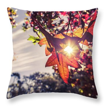 Throw Pillow featuring the photograph Autumn Sky And Colorful Leaves In Fall Season With Sun Shine On  by Jingjits Photography