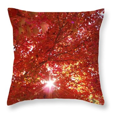 Autumn Sky IIi Throw Pillow by Anna Villarreal Garbis