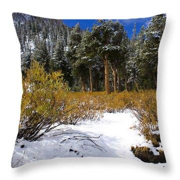Autumn Snow Throw Pillow by Chris Brannen