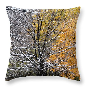Throw Pillow featuring the photograph Autumn Snow by Doris Potter