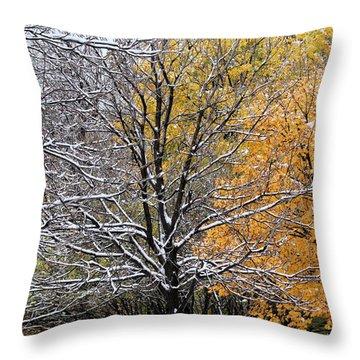 Throw Pillow featuring the photograph Autumn Snow by Doris Potter