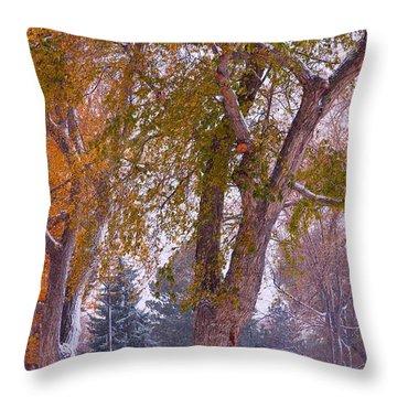 Autumn Snow Park Bench   Throw Pillow by James BO  Insogna