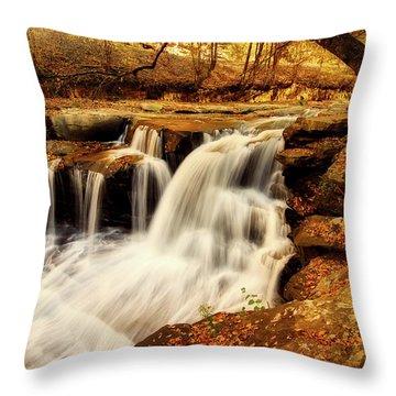 Autumn Solitude Throw Pillow by L O C