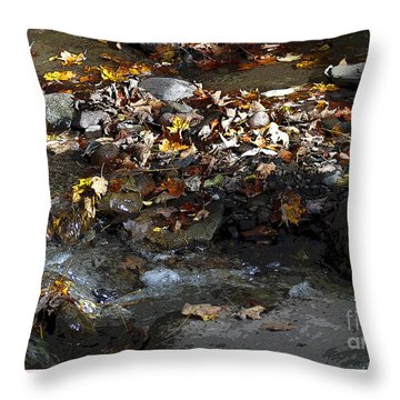 Throw Pillow featuring the drawing Autumn Soup by Diane E Berry